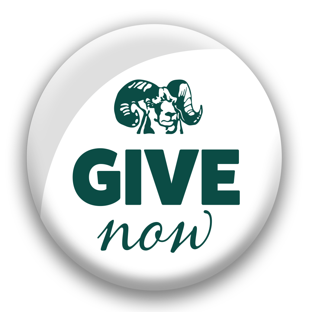 Give Now