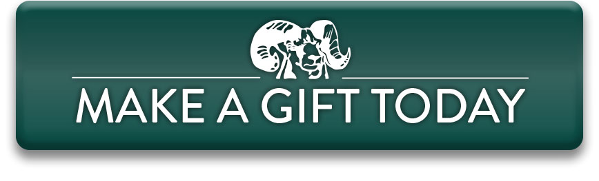 Make a gift today